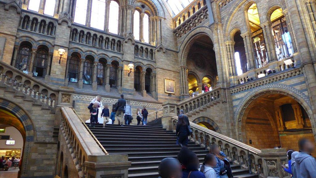 自然史博物館の階段