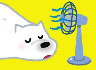 くまの扇風機